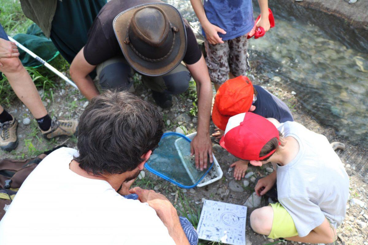 FRAPNA Education à l'environnement