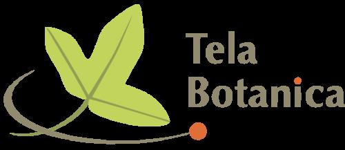 Tela-botanica