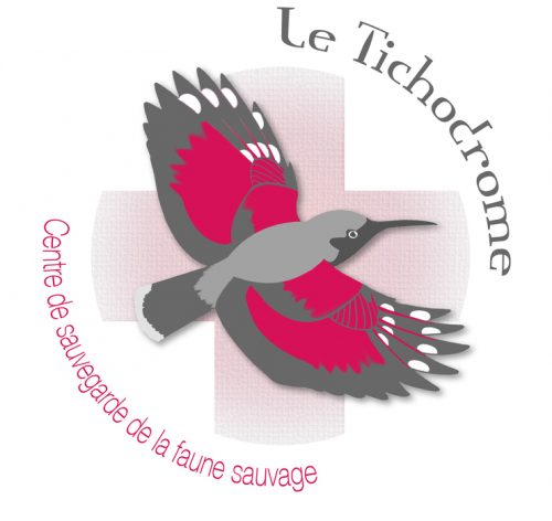 Centre de sauvegarde de la faune sauvage Le Tichodrome