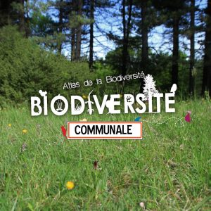 Bannière Atlas de la biodiversité communale