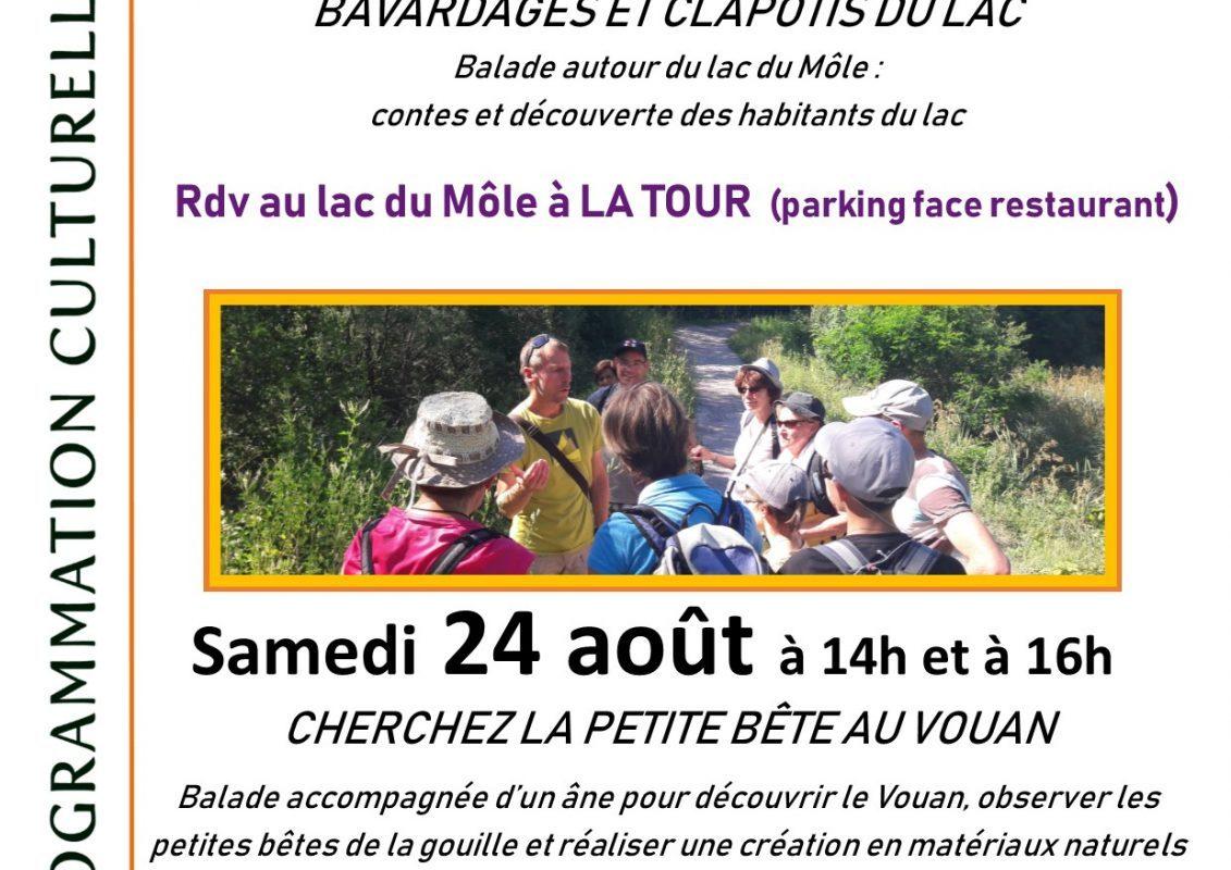 affiche lac du Môle