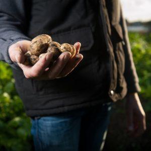 Covid-19 - l'après : une nouvelle agriculture ?