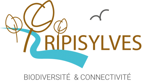 Ripisylves