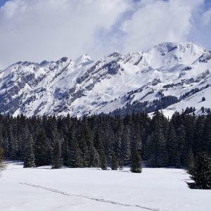 Plateau de Beauregard - Projet de retenue d'altitude